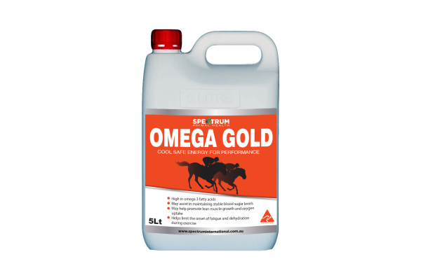 Omega Gold High Energy Oil